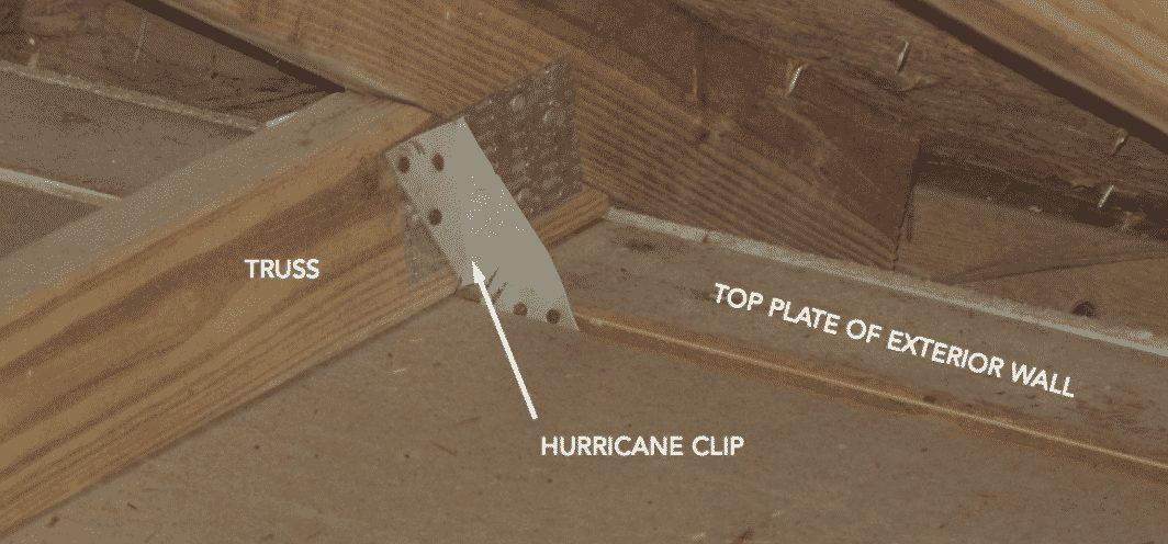 hurricane clips