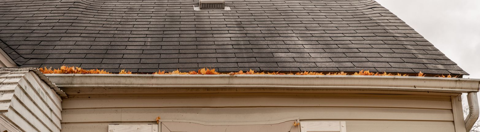 A Guide to Roof Maintenance: Tips, Checklist, & Guide
