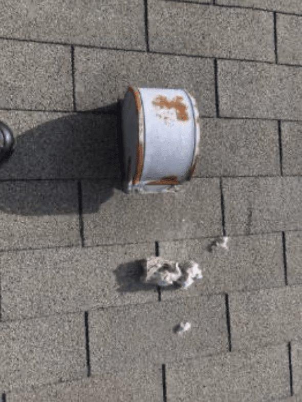 dryer vent gooseneck on roof